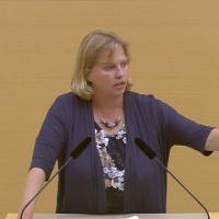 Ruth Waldmann im Parlament